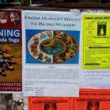 2016-June-Being-Human-at-Dharamsala-India-A-Hungry-Ghost-Retreat-113-Medium