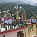 2016-June-Being-Human-at-Dharamsala-India-A-Hungry-Ghost-Retreat-19-Medium