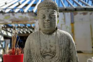 Buddha Statue amongst the ruins of Nalagiri House